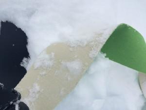 雪をつけて・・・